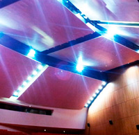 Covering walls and ceiling. Niemeyer Auditorium. Aviles